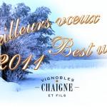 Meilleurs voeux en cette nouvelle année 2011