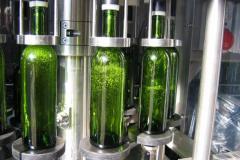 Mise en bouteilles du Bordeaux blanc : la tireuse